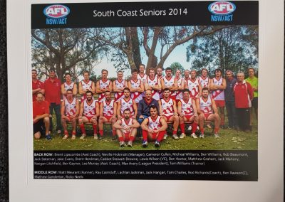South Coast Seniors 2014